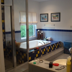 ns-ensuite-before